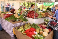 週末マーケット@Northside Produce Market