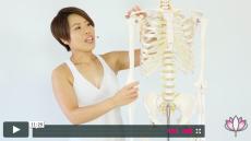 【ヨガ動画④】肩を耳から離さないダウンドック