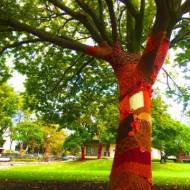 秋&冬モード:あったかツリー