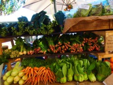 食の背景を知ろうとする:オーガニックマーケットでも働き始めました!