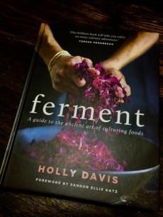 『Ferment』出版記念イベントへ  with Holly Davis