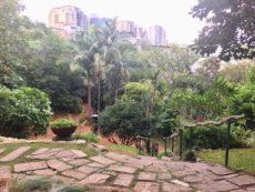 都会のオアシス!ウェンディーズ シークレット ガーデン